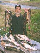 Douglaslakeinfo com douglas lake tennessee information for Douglas lake fishing